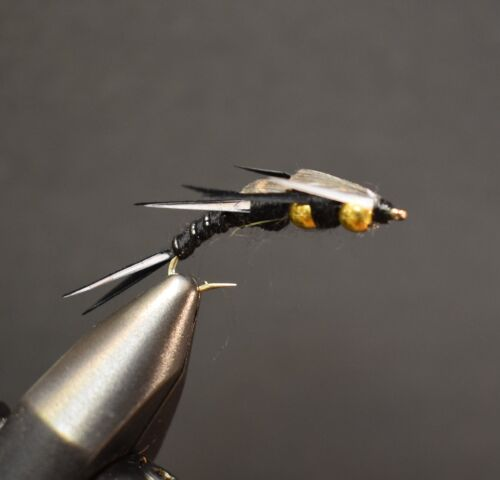 Double Bead  Black Stonefly Nymph  Fly Fishing Flies 2 Flies Size 6