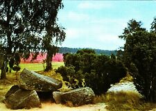Findlinge mit Blick zum Hügelgrab , Lüneburger Heide  ,Ansichtskarte
