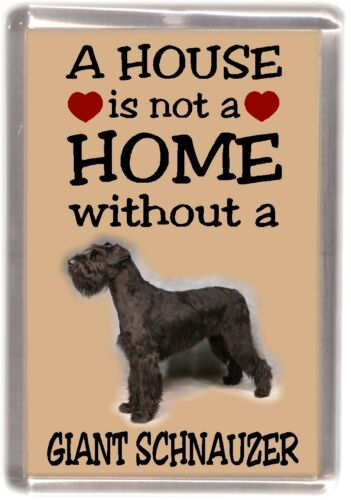 """Giant Schnauzer Dog Fridge Magnet /""""A HOUSE IS NOT A HOME/"""" by Starprint"""