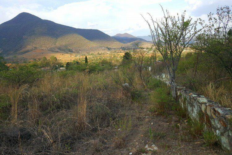 Tlalixtac vendo terreno sobre carretera a 2035 pesos el m2