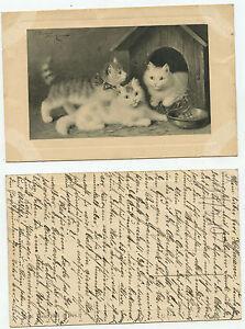 09354-Katzen-in-Hundehuette-alte-Kuenstlerpostkarte