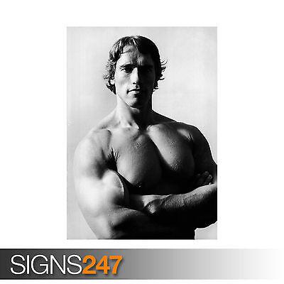 Arnold Schwarzenegger Bodybuilding Giant Poster Art Print A0 A1 A2 A3 A4 Sizes