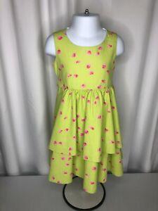 Plum-Pudding-girls-3T-dress-sleeveless-light-green-w-pink-flowers-back-zip-sash