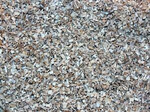 Reptile,Snake,Bearded dragon Vivarium Substrate Fine Beach Wood Chippings