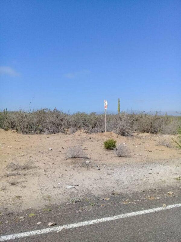 Lote San Juanico 20 Hectareas