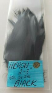 50-HERON-FEATHERS-034-SPEY-034-Dyed-Black-Size-2-034-3-034