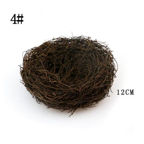 Nest Micro Landschaft Decor DIY Schöne Miniatur Fee Garten Little Bird Egg