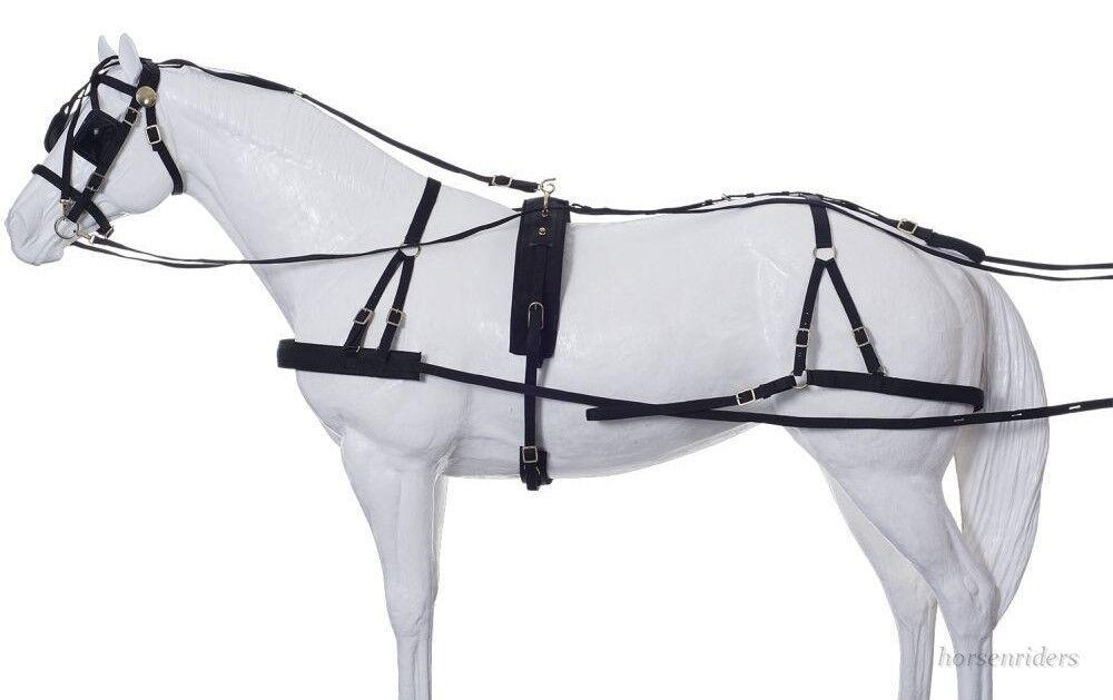 Horse Driving Harness  Herculean  Large Horse Dimensione  Nylon