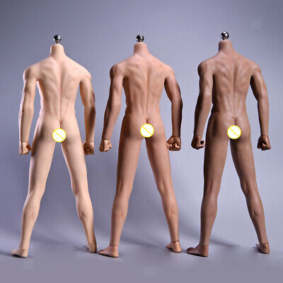MagiDeal 1//6th Flexible Muscle Skeleton Male Nude Body for Phicen Wheat Skin