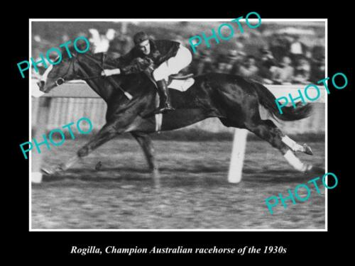 OLD LARGE HORSE RACING PHOTO OF ROGILLA, CHAMPION RACE HORSE OF THE 1930s 1