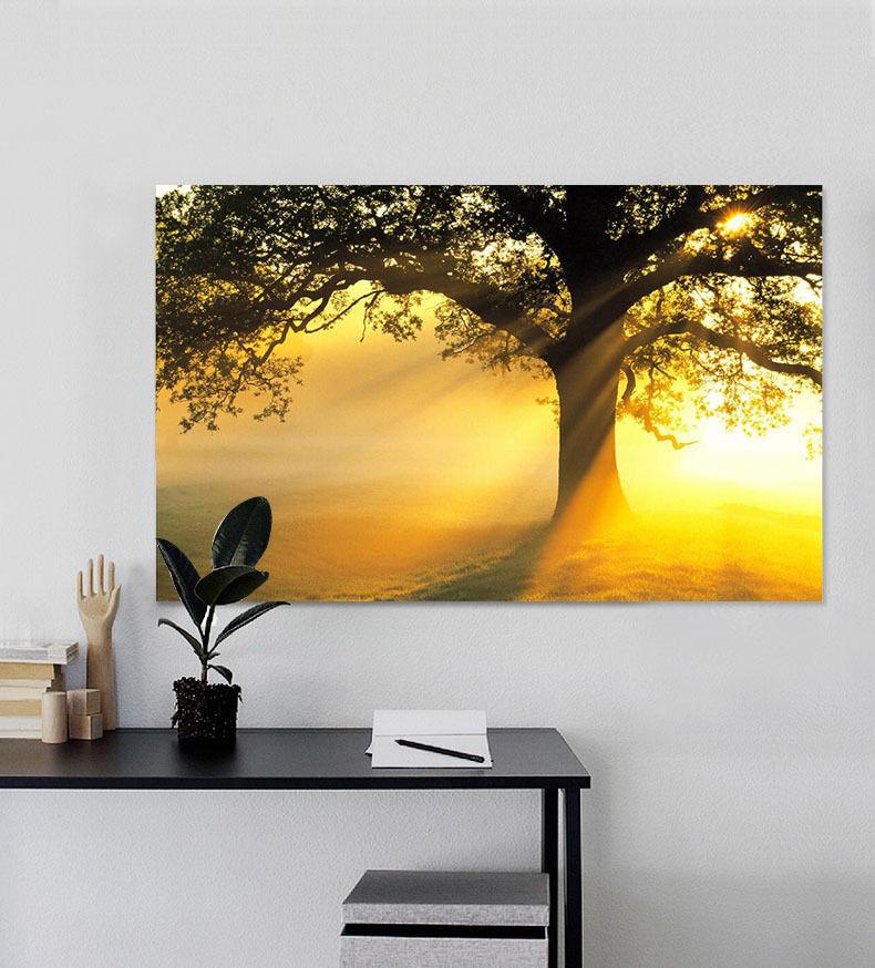 3D Sonne, Baum 233 Fototapeten Wandbild Fototapete BildTapete Familie AJSTORE DE