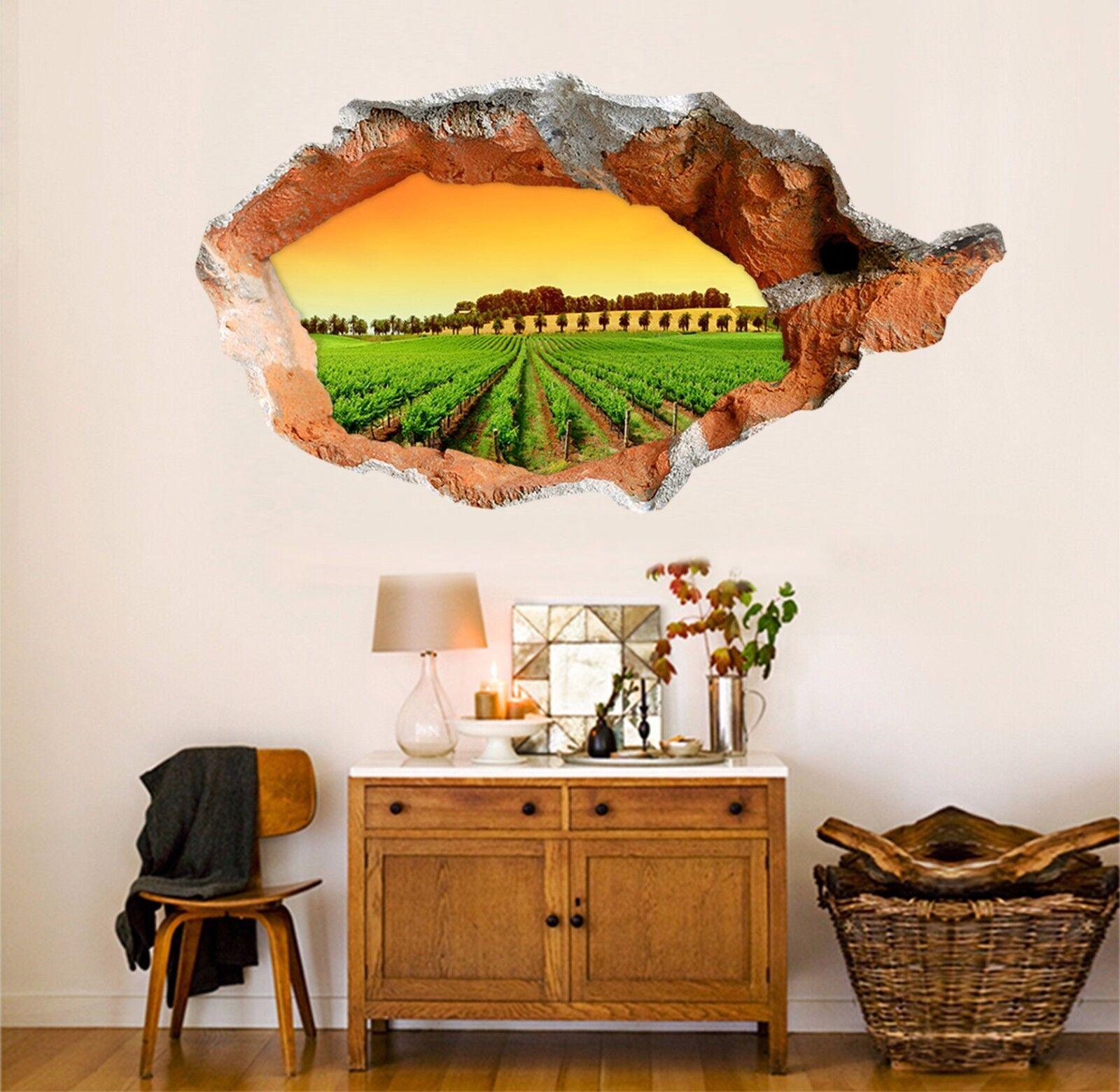 3D Terreni Agricoli 151 Parete Murales Adesivi Decal Sfondamento AJ WALLPAPER IT
