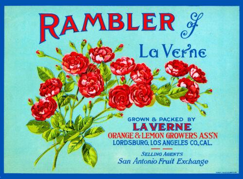 Rambler #1 La Verne Lordsburg Lemon Citrus Fruit Crate Label Art Print