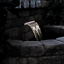 thumbnail 2 - Oase Pontec PondoFall Garden Pond Waterfall Blade Standard or LED Spillway Box