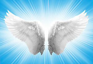 60 angel reiki attunements ultiumate package pdf manuals on cd rh ebay co uk Magical Reiki Symbols Magical Reiki Symbols