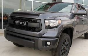 TOYOTA TUNDRA TRD PRO GRILLE WITH HOOD MOLDING GRAY (1G3 ...