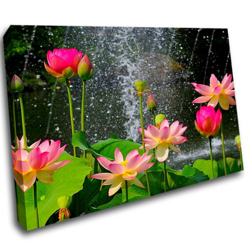 Flowers Water Bathroom Splash Framed Wall Mount 3D Art Canvas Picture Room F213