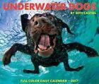 Underwater Dogs by Seth Casteel 9781682342701 Calendar 2016