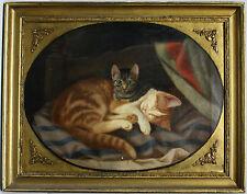 Fink Carl W.E. Cat Cats Katze Hessen Kassel Gatto Chat Katt kissa kočka кот gato