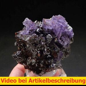 7881 Sphalerite Fluorite  ca 11*11*6cm Elmwood Mine Tennessee USA 1993 MOVIE