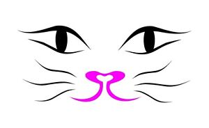 Beautiful-Cat-face-stencil-template-350-micron-Mylar-not-thin-stuff-CAT007