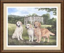 GOLDEN RETRIEVERS fine art dog print by Lynn Paterson
