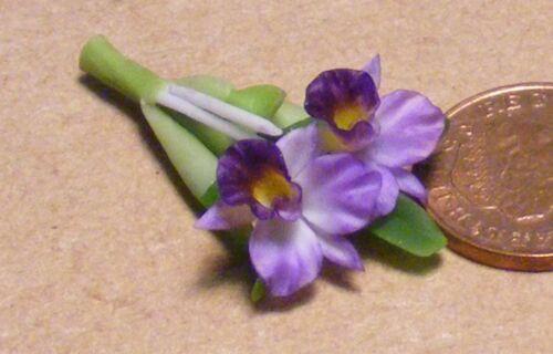 1:12 SCALA Malva Orchidea tumdee Casa delle Bambole Miniatura Accessorio Giardino di fiori 11 S