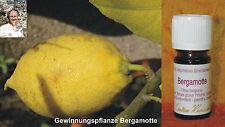 BERGAMOTTE - Citrus bergamia 5ml 100% naturreines ätherisches Öl Sabine Kramel