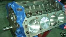 302 306ci Ford Short Block Race Prepped Makes 440hp Fits Nasa Rules Too