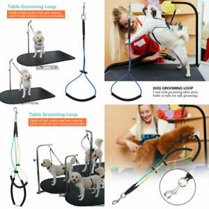 2019-Pet-Noose-Loop-Lock-Clip-Rope-Lead-For-Grooming-Table-Arm-Bath-Adjustable