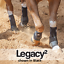 Classic Equine MINT LEGACY2 SYSTEM Front Rear Value Pack M Horse SMB Sport Boots