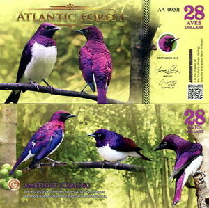 ATLANTIC-FOREST-28-aves-dollars-2016-FDS-UNC