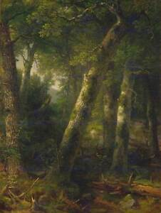 ASHER-BROWN-DURAND-AMERICAN-FOREST-MORNING-LIGHT-OLD-ART-PAINTING-PRINT-BB4880B