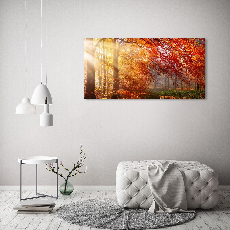 Murales de pantalla de vidrio de la la la impresión en vidrio 120 x 60 decoración paisajes otoño bosque b99006