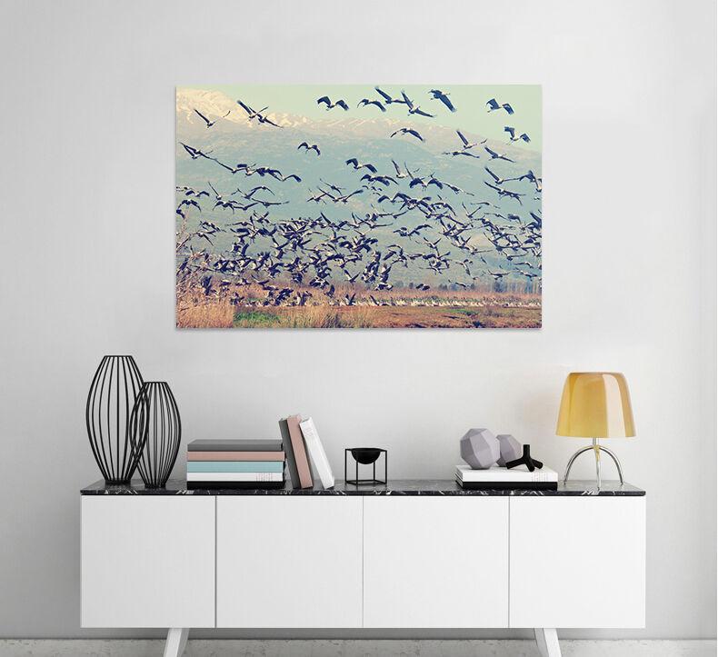 3D Vögel des Himmels 65 Fototapeten Wandbild BildTapete AJSTORE DE Lemon
