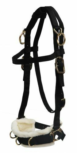 Nylon Lunging Caveson Fleece Lined Nose Horse Training Aid Adjustable