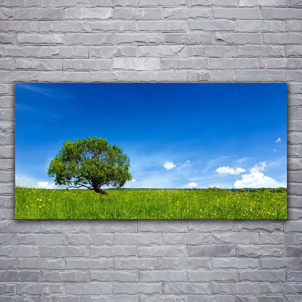 Impression sur verre Wall Art 120x60 Photo Image Herbe Arbre Nature