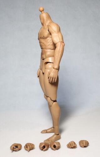 "1:6 Scale ZC Toys  man  Muscular Body Fit 12/"" Hot Toys Male Head Sculpt  CN"