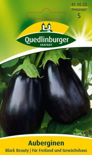 Melanzane semi Black Beauty SEMENTI ORTAGGI VIOLETTE uova frutto Quedlinburger