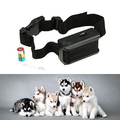 Anti Bark No Barking Tone Shock Training Collar for Small Medium 5-150 Pound Dog