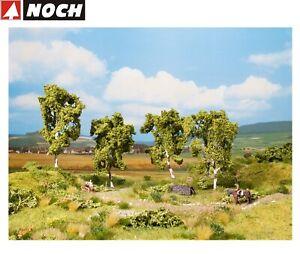 NOCH-21005-PROFI-Birke-11-5-cm-hoch-4-Stueck-NEU-OVP