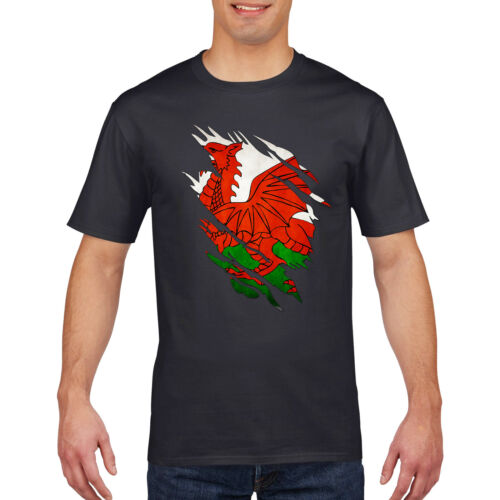 6 nations Rugby T Shirt Déchiré Poitrine drôle Wales Angleterre Irlande Ecosse PT850