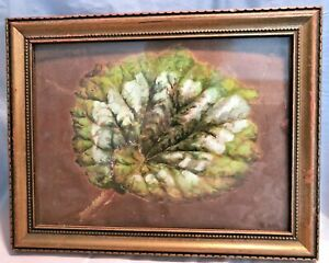 Small-Watercolor-of-Begonia-Leaf-in-Frame