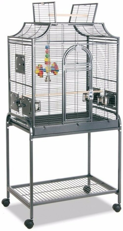 Parrot Bird Cage Aviary Free Standing Standing Standing Mobile Vintage Style Pet Home w Wheels 2f90bf