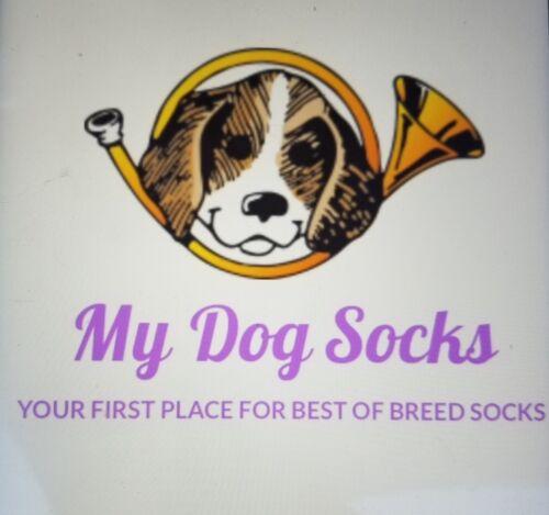 Bichon Frise  Dog  lightweight fun earrings  jewelry FREE SHIPPING!