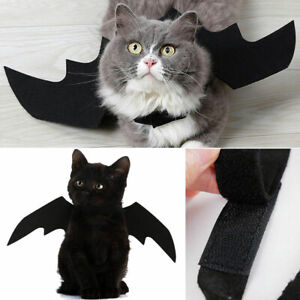 Pet-Cat-Bat-Wings-for-Halloween-Party-Puppy-Small-Vest-Cosplay-Bat-Costume