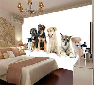 Details About Cue Dogs Cat Guinea Pig Full Wall Mural Photo Wallpaper Print Kids Home 3d Decal