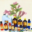 3ml-Essential-Oils-Many-Different-Oils-To-Choose-From-Buy-3-Get-1-Free thumbnail 65