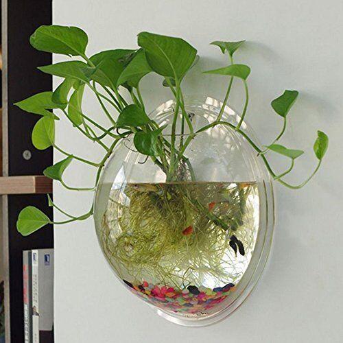 Acrylic Hanging Wall Mount Fish Tank Bowl Vase Aquarium Plant Pot Bubble Decor