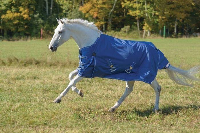SHIRES EQUESTRIAN STORMCHEETA HORSE BLANKET  SIZE 69  (400 GRAM)  online at best price